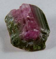Polished Watermelon Tourmaline #